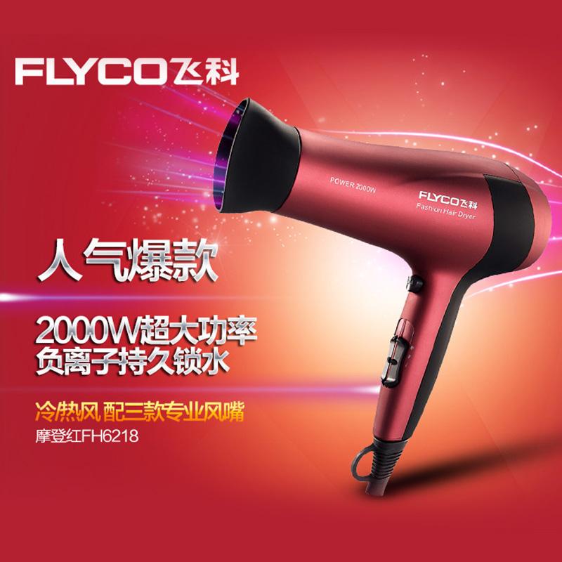 飞科电吹风机 负离子冷热恒温护发 专业大功率FH6218