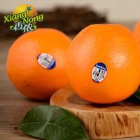【香侬果品】新鲜水果 美国进口甜橙 澳橙 甘甜可口 1000g