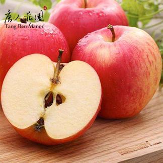 唐人庄园 特惠苹果 水晶富士 5斤包邮