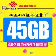 武汉联通4G无线上网流量卡武汉45G包年流量(湖北40+全国5G)