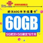 武汉联通4G无线上网流量卡武汉60G半年流量(武汉5+湖北5G/6个月)