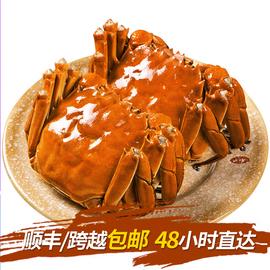 東吳孫氏萬年鮮陽澄湖大閘蟹鮮活現貨大螃蟹海鮮水產鮮活生鮮4對裝