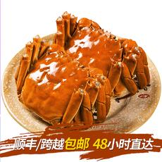 东吴孙氏万年鲜阳澄湖大闸蟹鲜活现货大螃蟹公3.5两母2.5两海鲜水产鲜活生鲜4对装