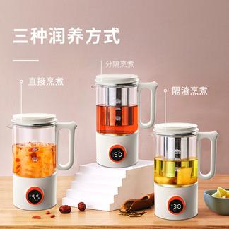 韩国现代(HYUNDAI)养生杯 迷你养生壶  白色 QC-ZC0415